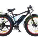 X4 Electron Bikes
